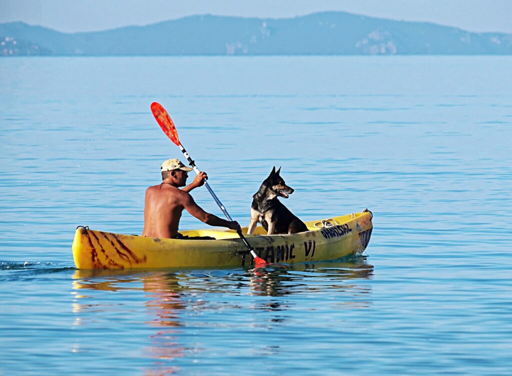 kayaking with dog